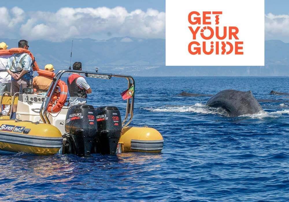 Excursie Walvissen zien op de Azoren
